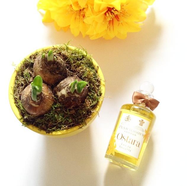 New Perfume Penhaligons Ostara uk fashion blog