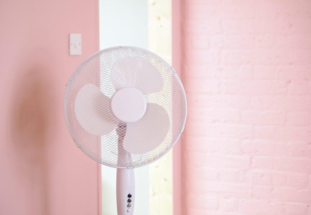 pink fan pink walls