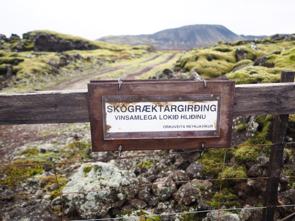 iceland-landscape-travel-blogger-tbloggers