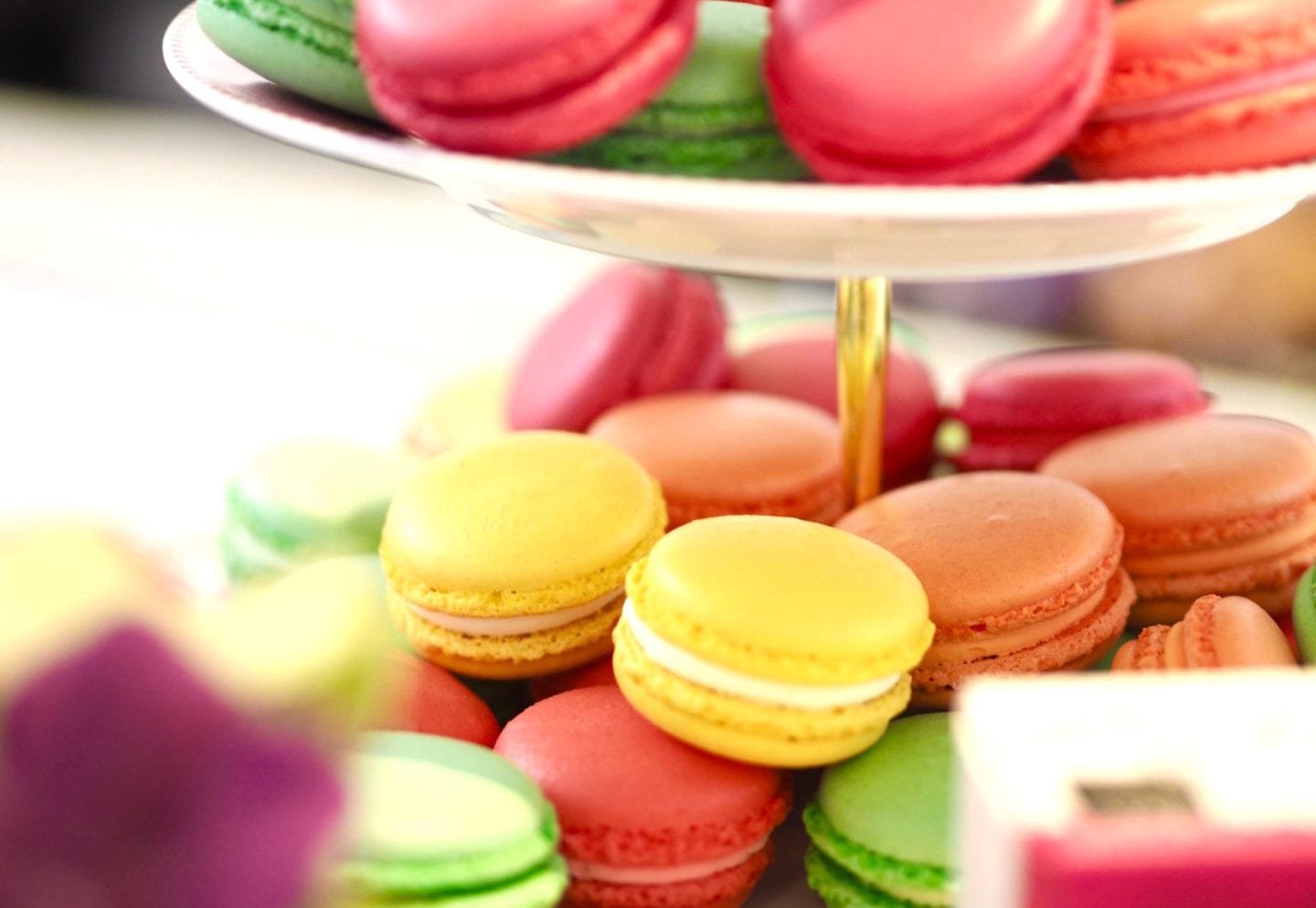 macaroons-in-sunlight