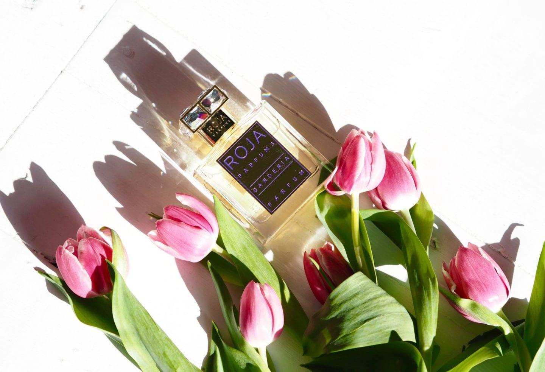 Roja 'Gardenia' perfume review