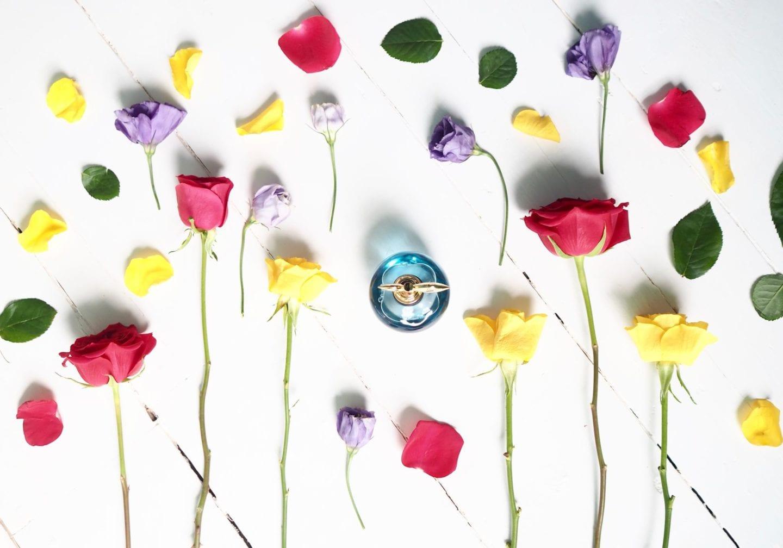 nina ricci perfume luna blue