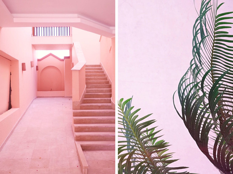 pink-egypt-soma-bay