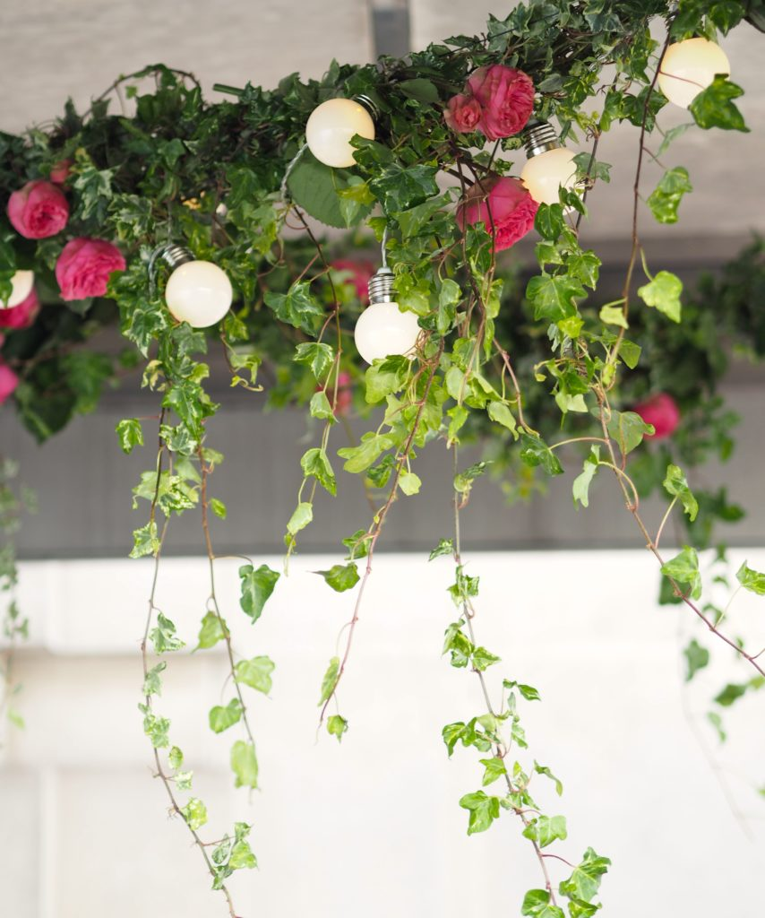 flowers-and-ivy-hanging-from-the-ceiling