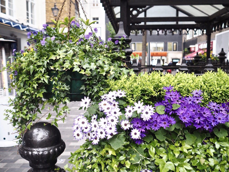 st-christophers-place-london-flowers