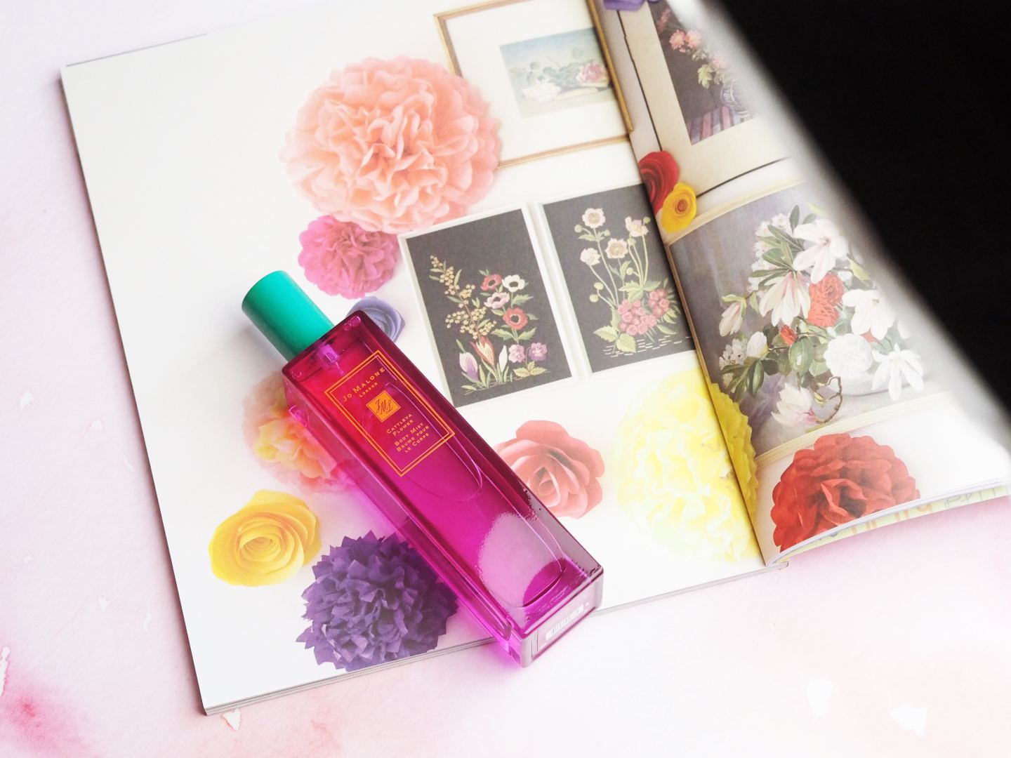 Perfume Jo Malone London Hot Blossoms Collection Fashion For Lunch