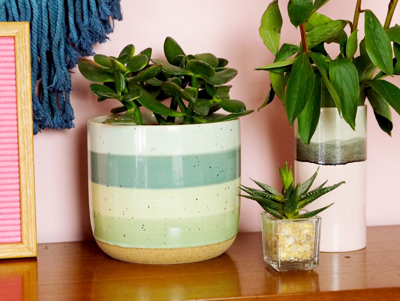 matalan green planter plant pot