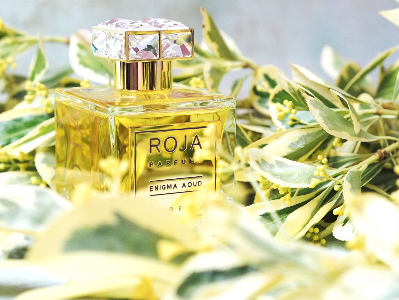 roja enigma oud perfume fragrance