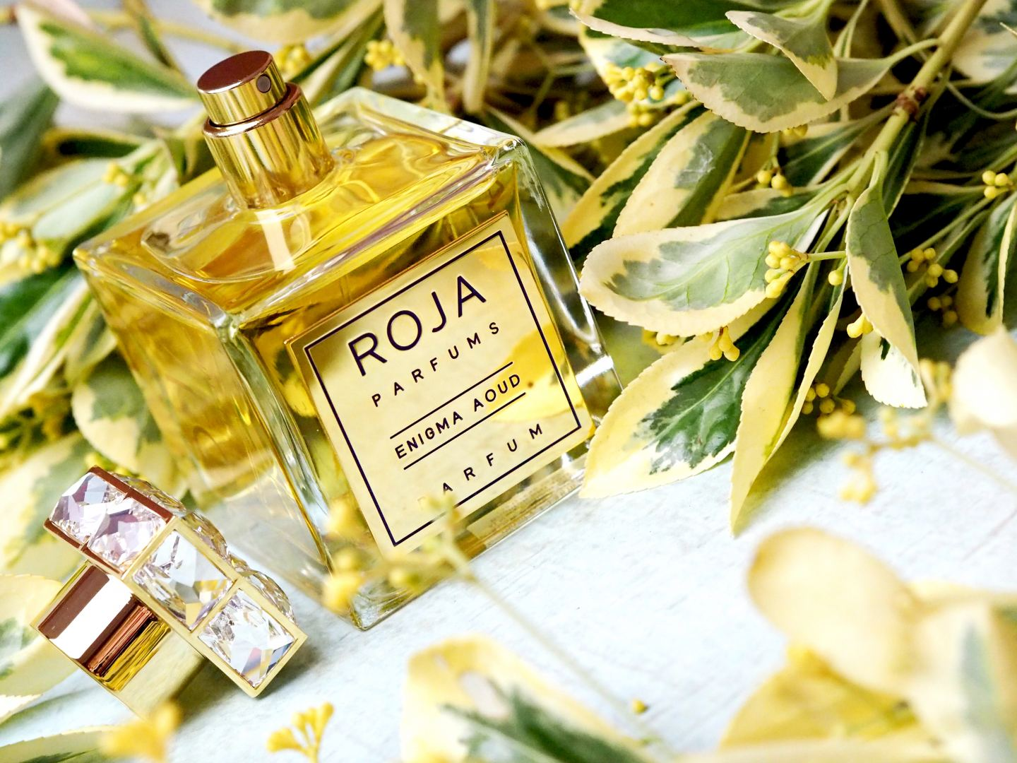 roja enigma oud perfume fragrance perfum fragrance 2018 review