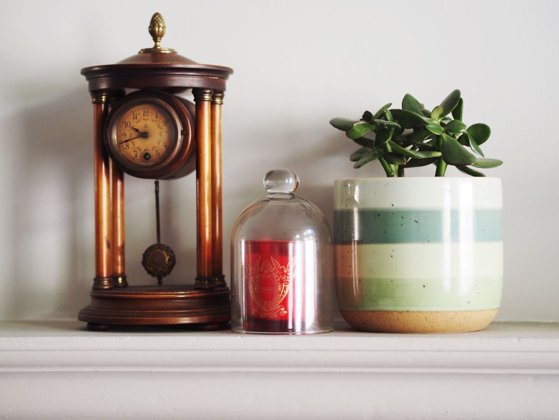 matalan green pot vase plant