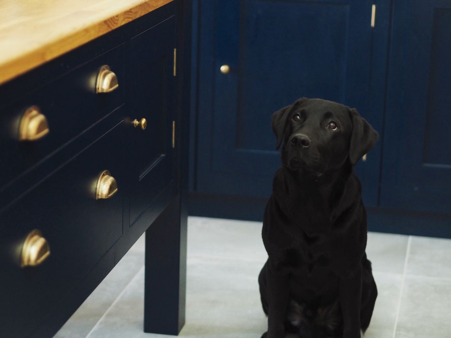 harvey jones kitchen navy blue wood worktops gold handles