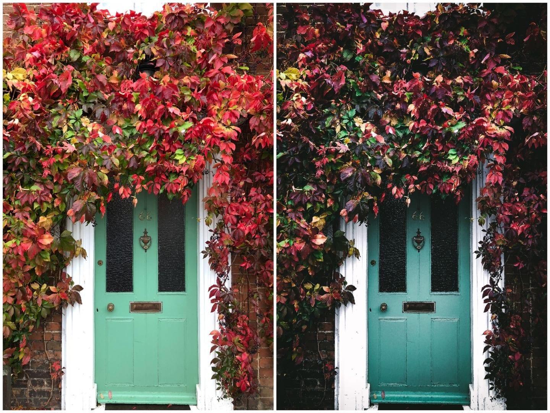 beth kirby free lightroom presets green door leaves