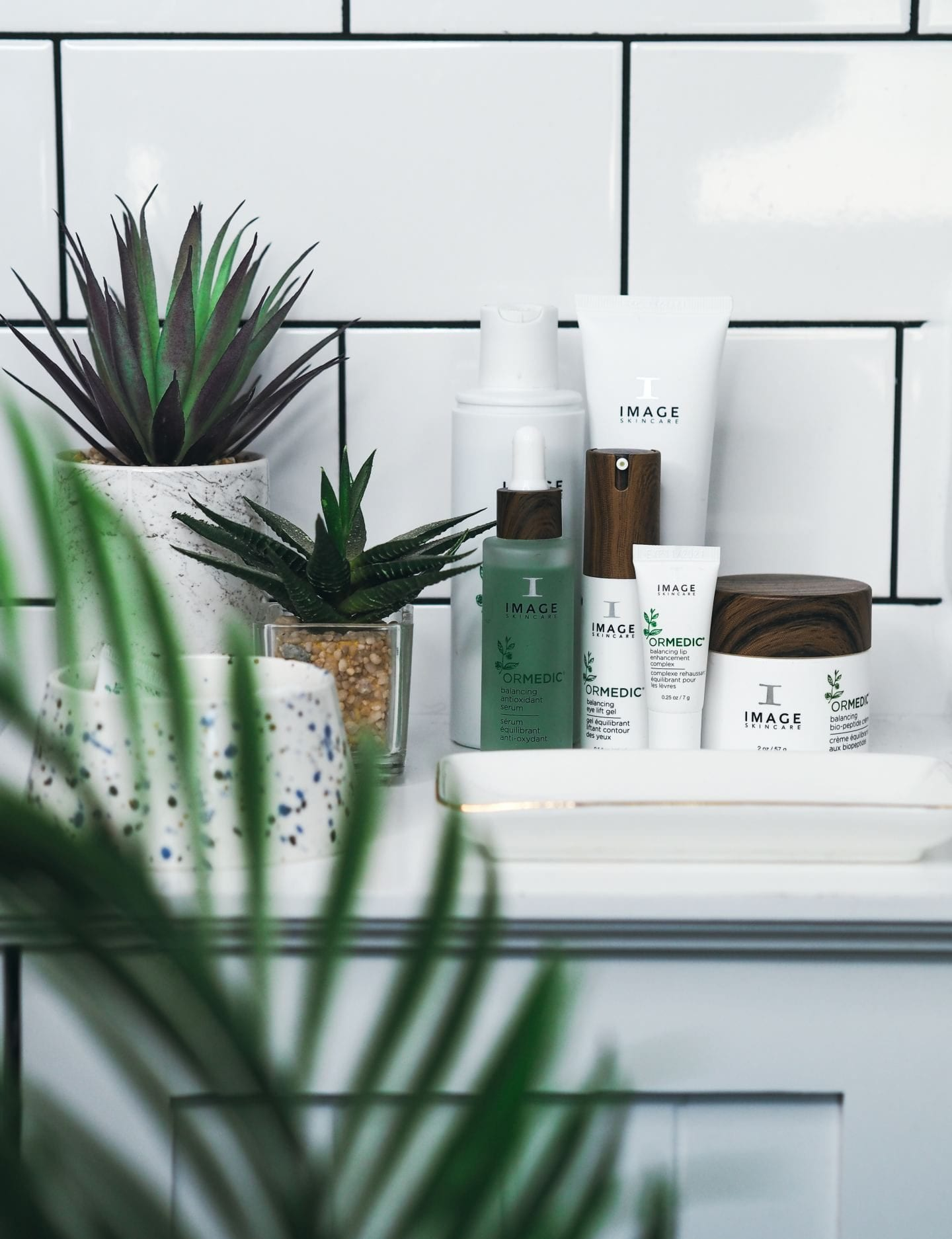 image skincare review ormedic collection bathroom cacti